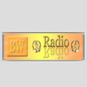 radio BW-Radio l'Allemagne, Mannheim