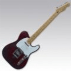 Radio telecaster Germany