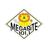 Radio Megasite 101.1 FM Türkei, Ankara