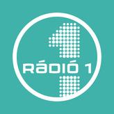 radio Rádió 1 96.4 FM Hongrie, Budapest