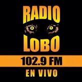 Радио KIWI Radio Lobo 102.9 FM США, Бейкерсфилд