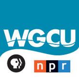 rádio WGCU Public Radio 90.1 FM Estados Unidos, Fort Myers