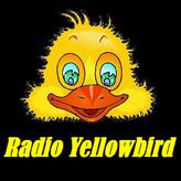 radio Yellowbird Holandia