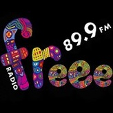 Radio Freee 89.9 FM Poland, Lublin