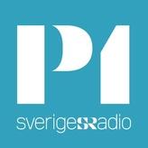 Радио Sveriges Radio P1 92.4 FM Швеция, Стокгольм