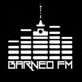 Barneo FM