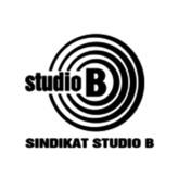 radio Studio B 99.1 FM Serbia, Belgrado